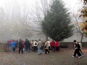 camminatori nella nebbia