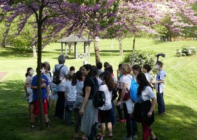 """● 24/4/18 – Gli alunni della 4^C di Montessori alla """"Passeggiata Botanica Primaverile"""""""