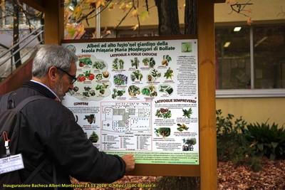 ● 23/11/18 – Tabellone degli alberi del Giardino Montessori